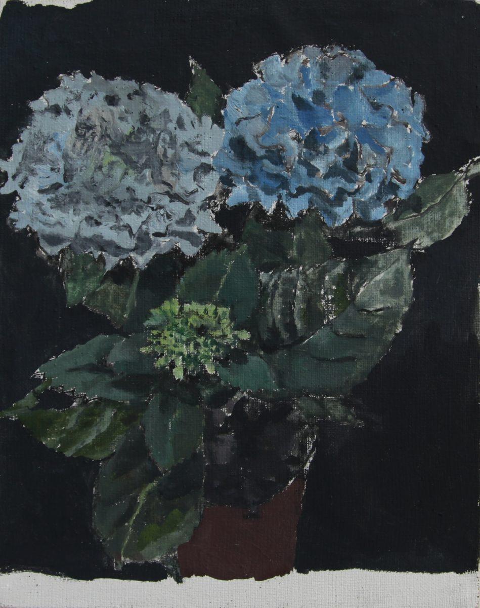 Hortensien 6, 2021, 20 x 25,5 cm