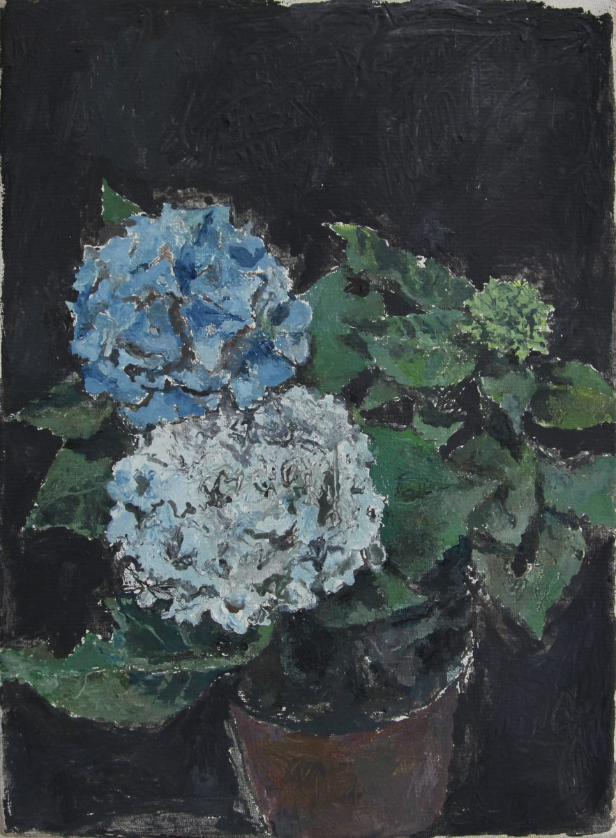Hortensien 5, 2021, 23 x 32 cm