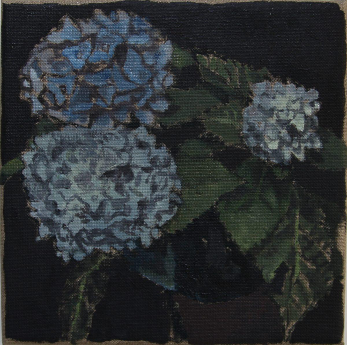 Hortensien 8, 2021, 20 x 20 cm