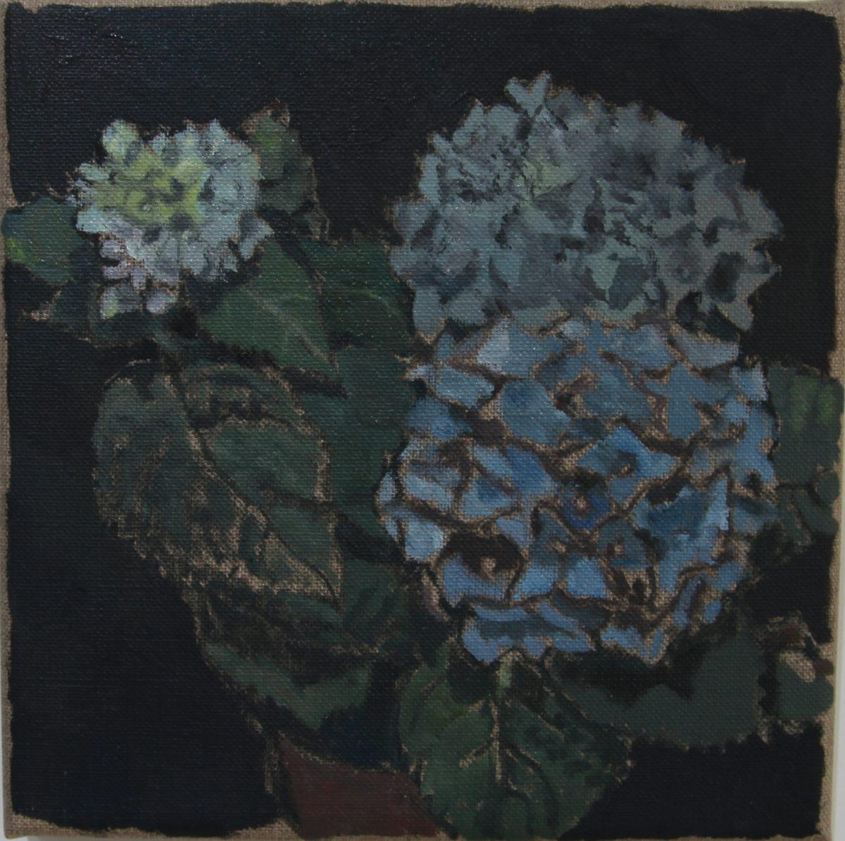 Hortensien 7, 2021, 20 x 20 cm