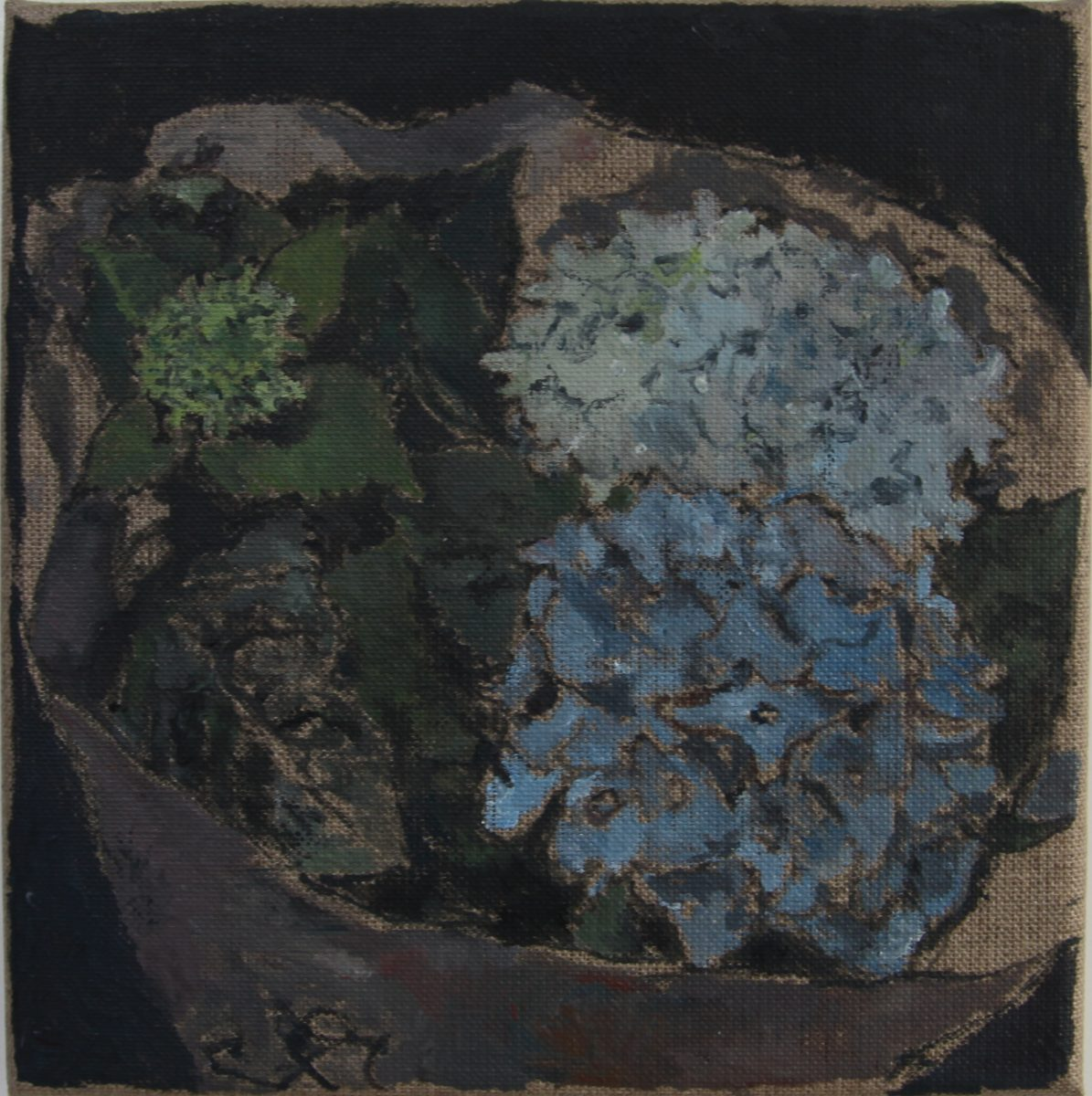 Hortensien 3, 2021, 20 x 20 cm